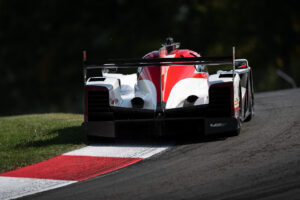 """Felipe Albuquerque and the Whelen Engineering Racing Cadillac DPI-V.R, mowing the grass inside """"Madness"""" at IMSA Mid Ohio 2020 motorsports photography by Luke Munnell"""